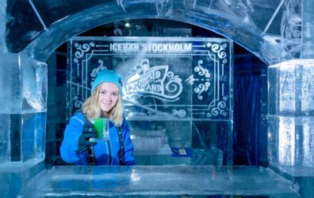 ICEBAR Stockholm Staycation